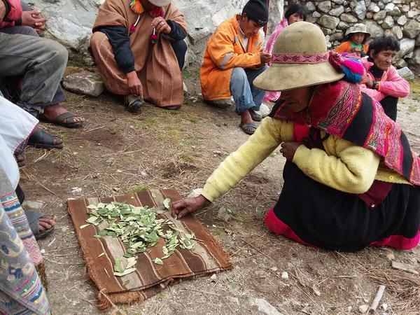 coca-ceremony