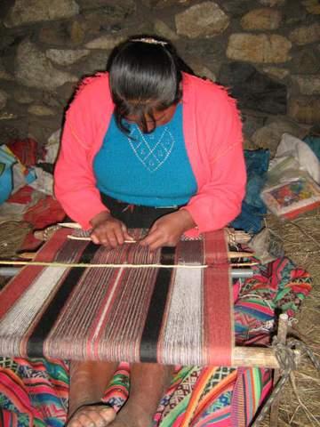 Andean weaver